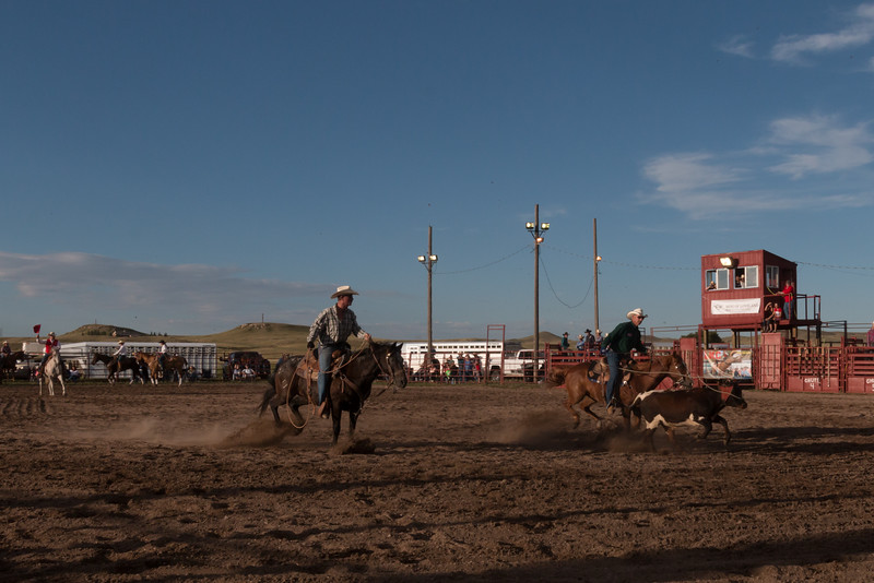 Team calf roping - one rider ropes the calf by the horns and the other slips a loop around the rear legs...