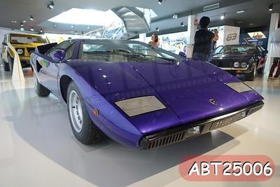 ABT25006