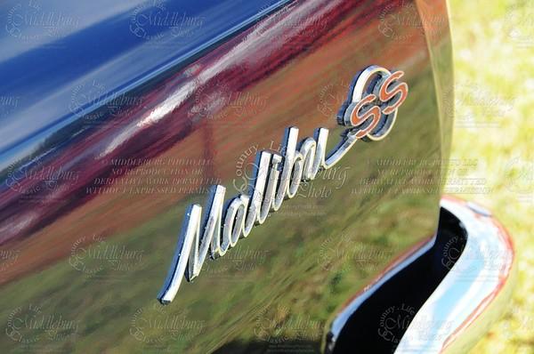 marshall11554 (2)