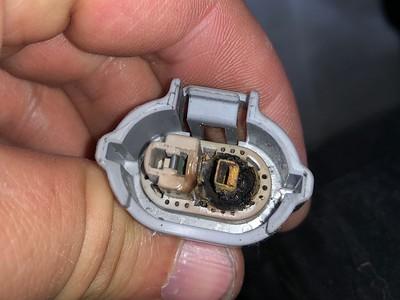 Passenger-side low beam plug.