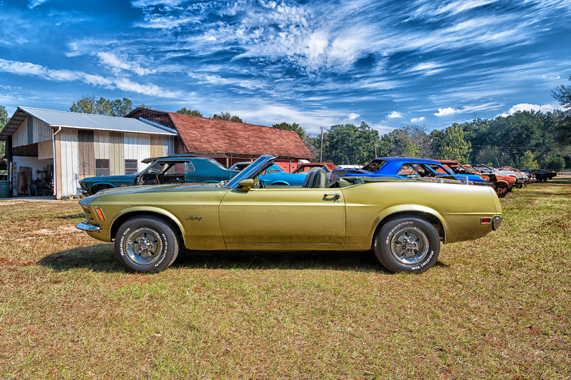 Mustang Village Pensacola-6-Edit