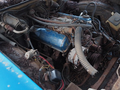 I also have another 429 - 4V  with auto transmission that goes with it. It was out of a 1975 police interceptor. It is only a 2 bolt main engine tho. I have not heard the engine run but it seems like its in good shape.