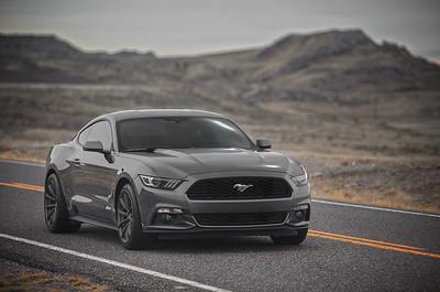 Mustang (03.15.15)