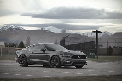 Mustang (03.27.16)