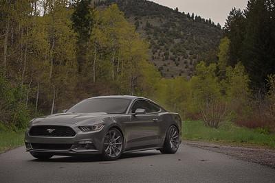 Mustang (05.22.15)