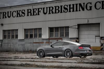 Mustang (10.30.16)