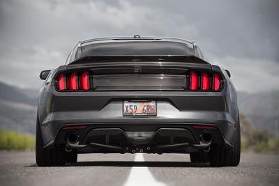 Mustang Trunk (05.20.16)