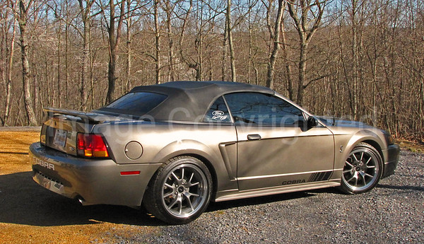 2001 Mustang Cobra Convertible - SOLD