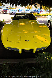 Corvette - Hervey Bay, Queensland, June 2010.