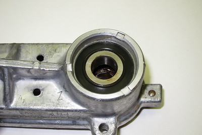 Primary Shaft Lower Bearing