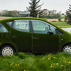 Grass Mercedes