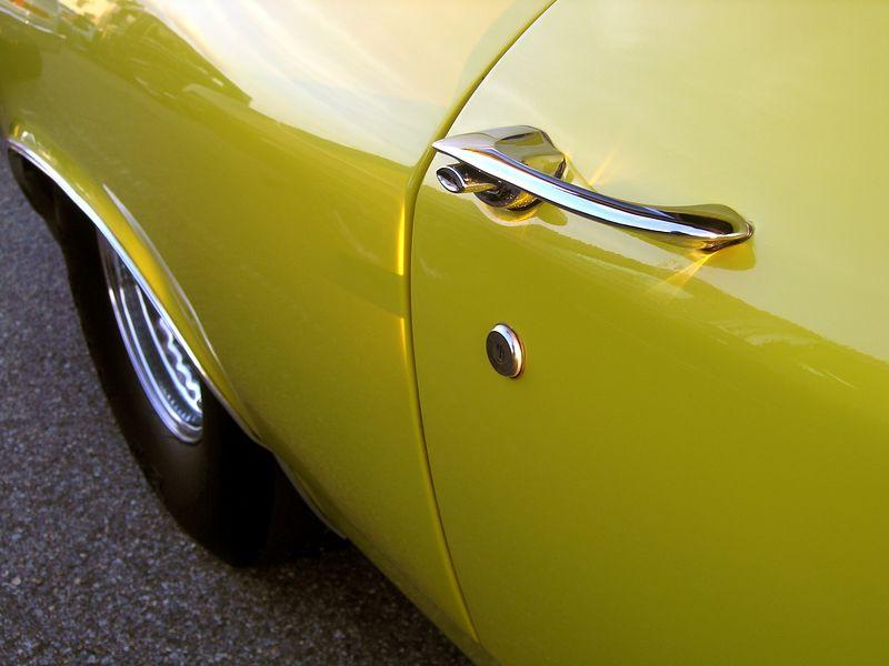 Yellow Nova (p9111943-C.jpg)