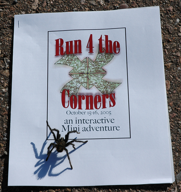 "The official start of the Run 4 the Corners ride began Sat. Oct. 15, 2005 at the Taos bridge (over the Rio Grande River), just west of Taos, NM. The MINIs were all greeted by this tarantula (not yet full grown). This ride was organized by NM MINIs  <a href=""http://www.NMMINI.org"">http://www.NMMINI.org</a> and  <a href=""http://www.MINI5280.org"">http://www.MINI5280.org</a> (Colorado MINIs)."