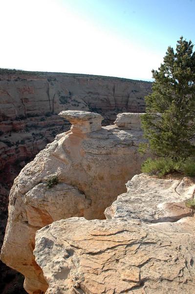 Colorado National Monument along Rim Rock Drive.