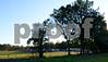 CRS_5709 - 2011-09-30 at 17-39-04