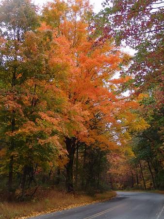 """Shift"" into Fall.. Oct 04'"