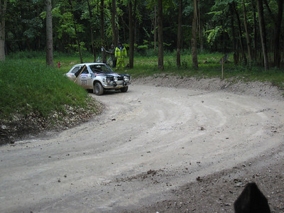 The forest rally section at Goodwood.