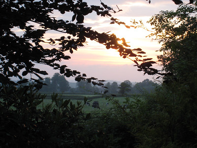 Sunrise over Somerset, taken from the lane outside Terry's place.