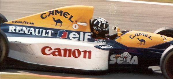 Damon Hill (race winner)