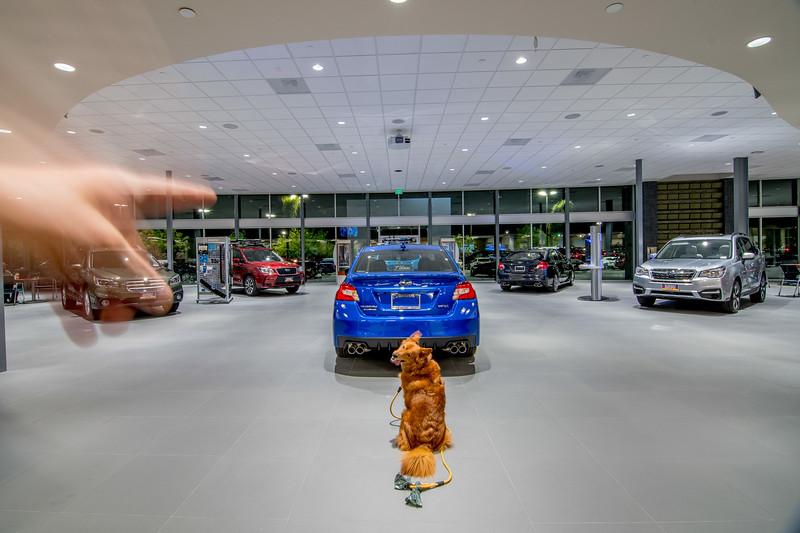 SubaruPacificJan2017 0016