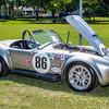 Autos in the Park, Cooper, 06-07-15