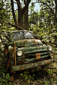 """Back Woods"""