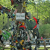The Tree of Shame never fails to attract the attention of first-time visitors. Hundreds of pieces of motorcycle shrouding, fenders and gas tanks-each with its own story about being bitten by the Dragon.