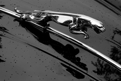 Jaguar XK 150 hood ornament