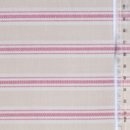 Pink and Cream with White Stripe