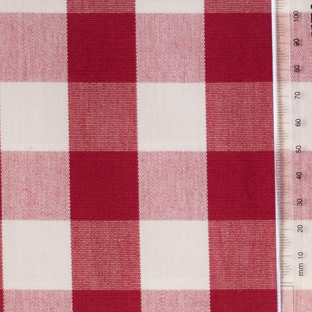 Red and White Check