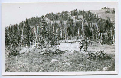 ARCHIVE WMA_P88_027 CARTER