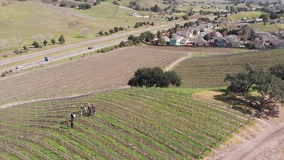 20200215 Casa Dumetz Vineyard Tour