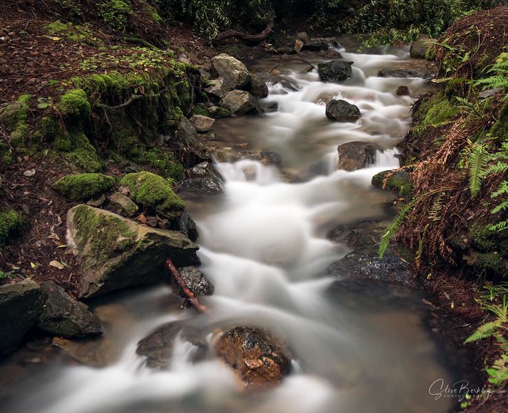Stream at Cascade Falls, Mill Valley, CA