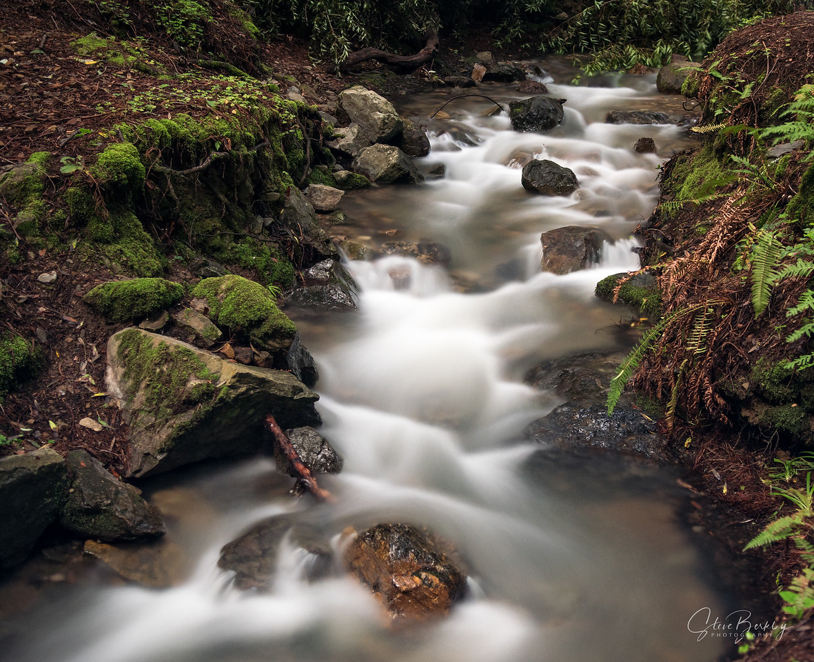 Stream at Cascade Falls, Mill Valley, CA