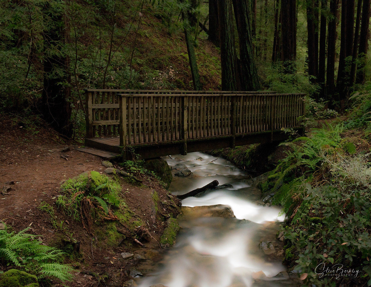Bridge at Cascade Falls, Mill Valley, CA