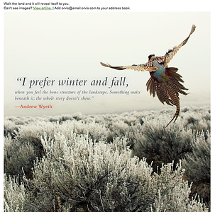 Email copy for Orvis.   Work created in-house with The Orvis Company, Manchester, Vermont.
