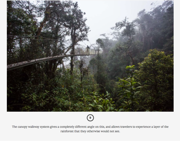 Matador Network Peru Cloud Forest feature.  June, 2017.  https://matadornetwork.com/read/12-images-that-show-perus-cloud-forest-for-the-awesome-adventure-it-is/