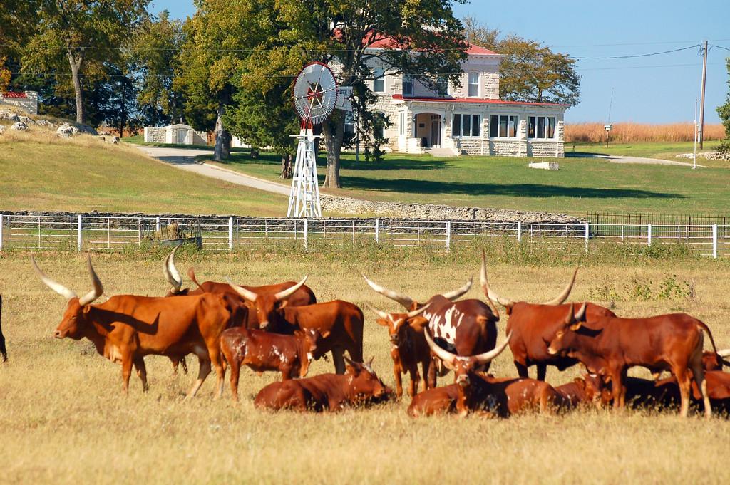 Clover Cliff Ranch