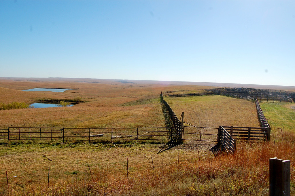 Cattle pens where trucks unload cattle in the spring and load them back up in the fall after feeding on the tallgrass prairie.