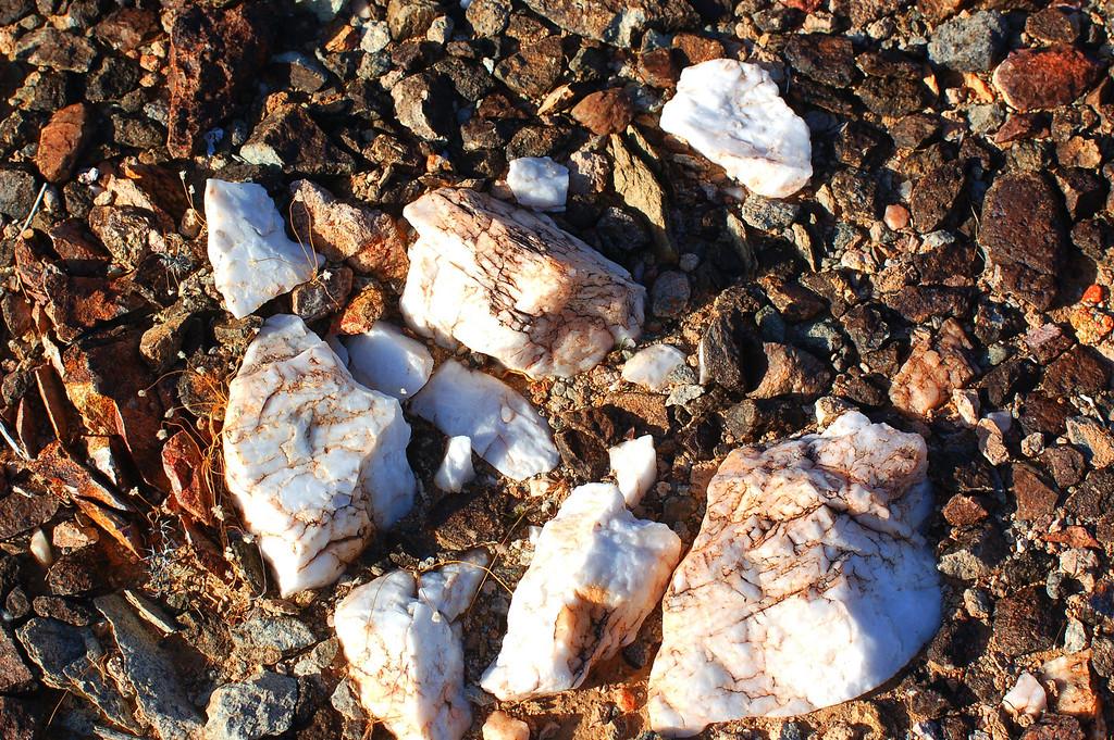 Fragmented Quartz rocks litter the landscape.