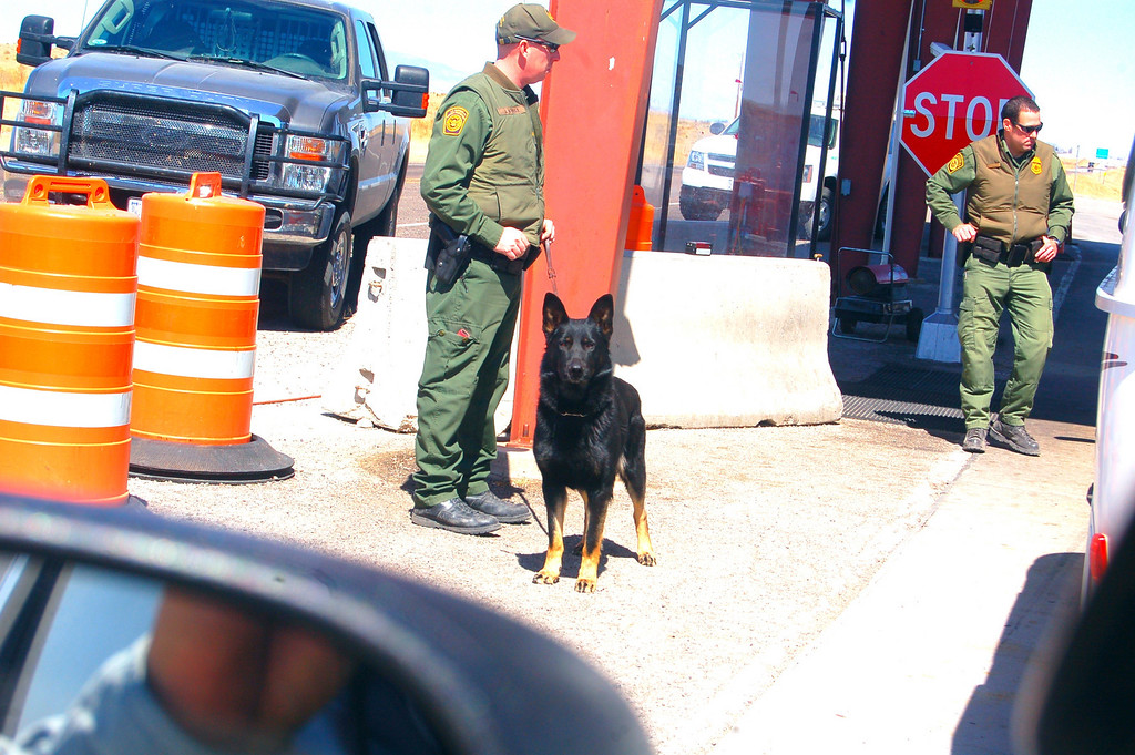"""I had to take a picture of ths dog. The whole time the agents were interviewiing Bob at the crossing, the dog was intently staring at me. It was a """"just make my day"""" moment. I am convinced that if I moved I would have been eaten alive."""