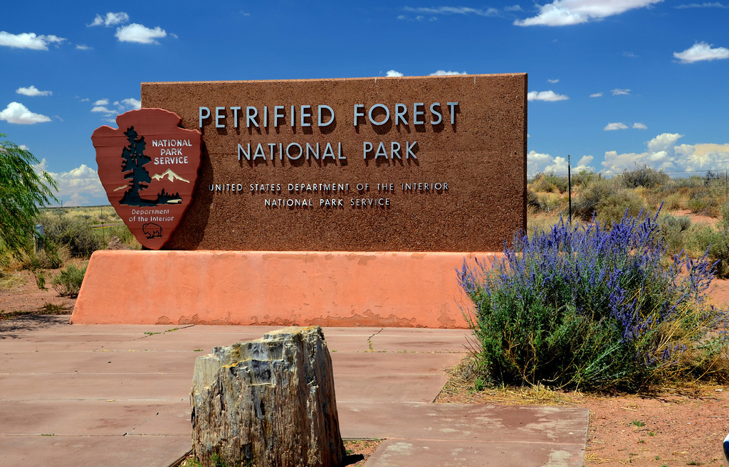 "Petrified Forest National Park offers no campground facilities for visitors. It does offer spectacular views of the Painted Desert and fields of gem like petrified wood pieces and large petrified logs scattered throughout the Park. Numerous pullouts along the road the offer great opportunities for picnic spots. Lots to see and do with Indian ruins, dinosaur fossils, and petroglyphs. I was more than a little surprised at how much this Park has to offer.<br /> <br /> This is the I-40 park entrance near the Painted Desert Visitor's Center.<br /> <br /> Where Early Dinosaurs Lived, Deal Expands a National Park:<br />  <a href=""http://www.nytimes.com/2011/09/08/us/08dinosaur.html"">http://www.nytimes.com/2011/09/08/us/08dinosaur.html</a>"