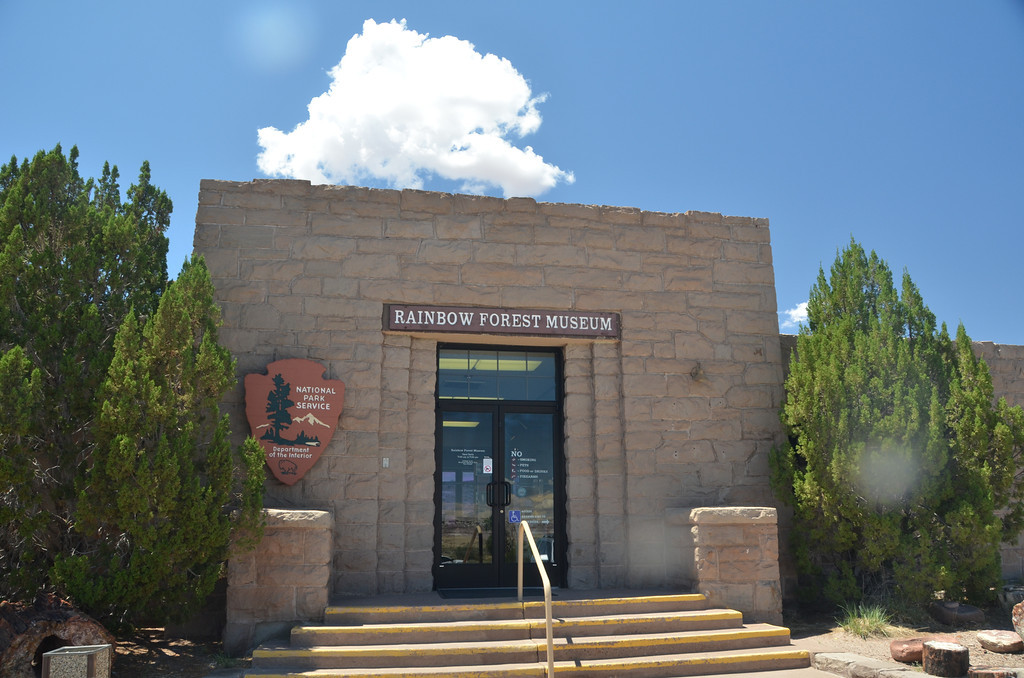 The Rainbow Forest Museum includes dinosaur displays and has a trail behind it with many petrified logs along the way.