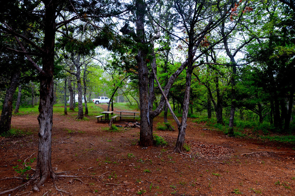 There are many primitive campsites at Turner Falls with a lot of space between other sites. I awoke in the morning with the sounds of turkey and cardinals calling.