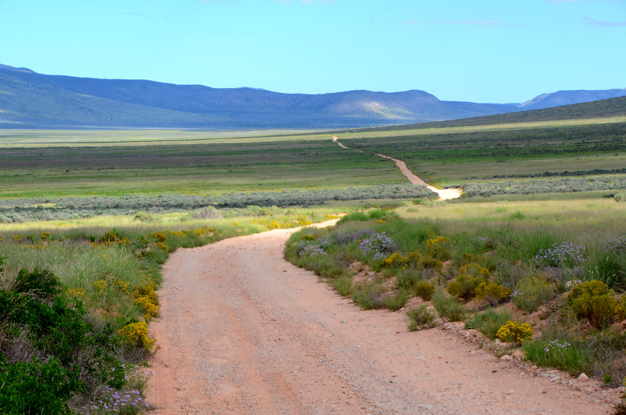 """""""Toroweap, a Paiute term meaning """"dry or barren valley,"""" refers to local features, including the valley and the overlook. <br /> <br /> """"Tuweep"""" came into use to describe the local white settlement and later the park area. Tuweep in Paiute (pronounced Tu-VEEP) refers to """"the earth""""."""