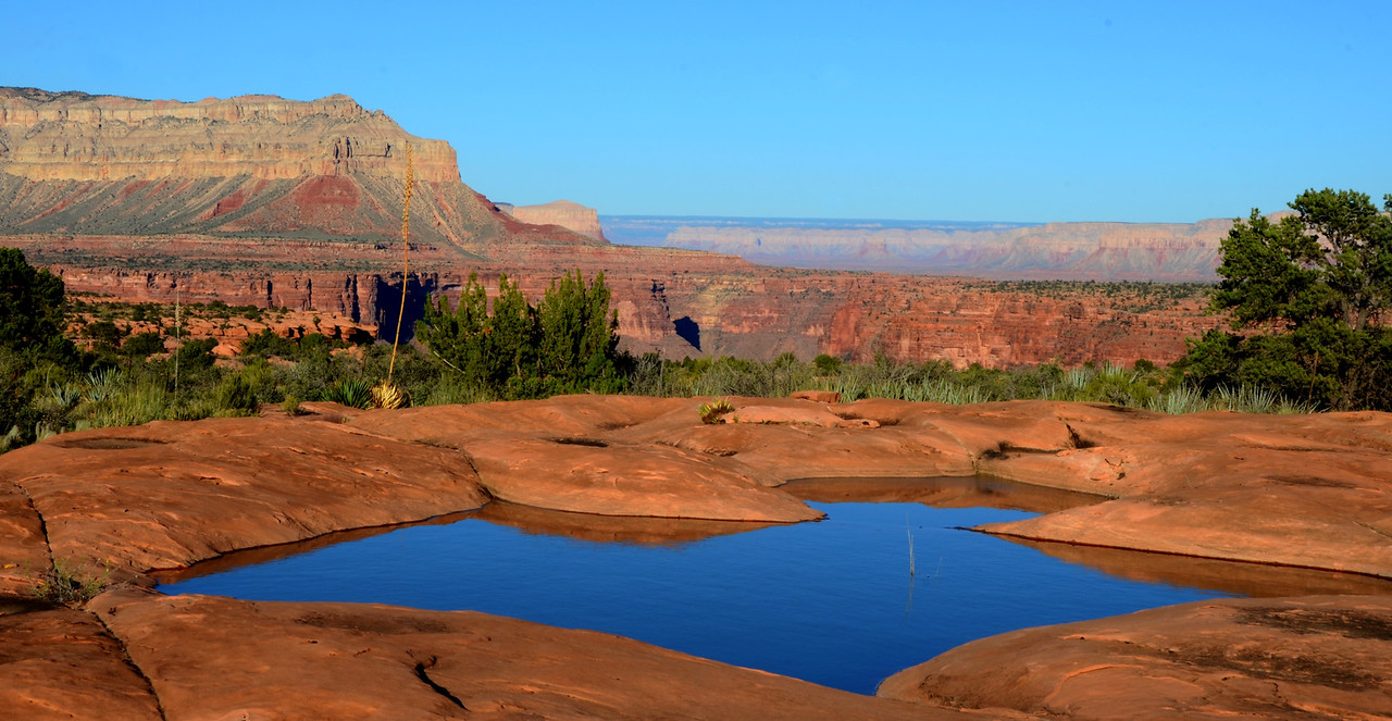 Tuweep Area<br /> <br /> Seasonal pools on the slick rock added much to the slick rock landscape. The pools were teaming with life.