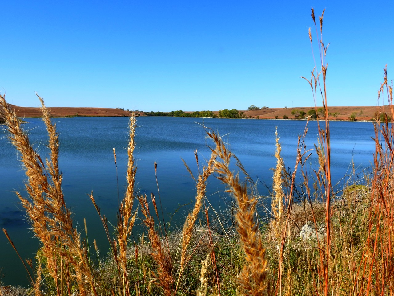 """""""I like to say, 'the Flint Hills don't take your breath away. They give you a chance to catch your breath.'""""    <br /> Dr. Jim Hoy, Professor, Author, Rancher, Folklorest."""