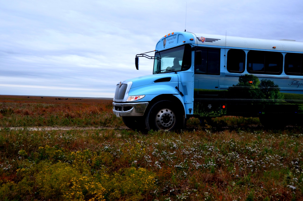 Tallgrass Prairie National Preserve  <br /> <br /> Bus stop to observe buffalo that have been reintroduced into the preserve in recent years.