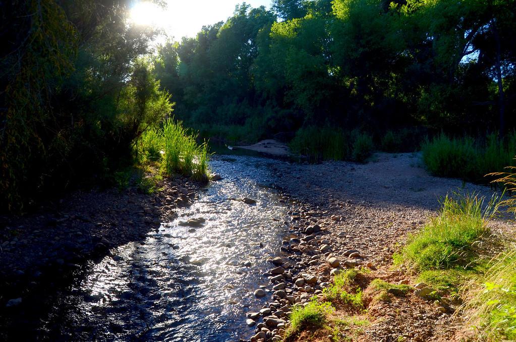 Verde River near campsite