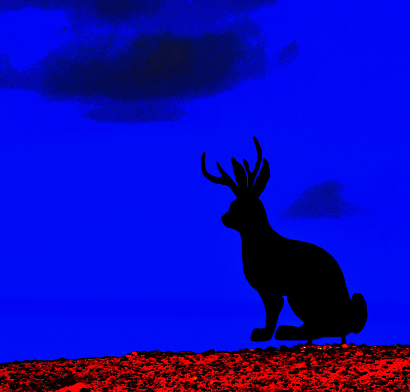 "August 18<br /> <br /> Douglas, Wyoming is the official ""Home of the Jackalope"".<br /> <br /> Jackalope Hunting licenses are issued to tourists. The tags are good for hunting during official Jackalope season, which occurs for only one day, June 31.<br /> <br /> On a hill outside of town, I catch a fleeting glimpse of one."